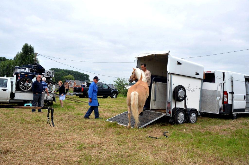 Paardenrally 10