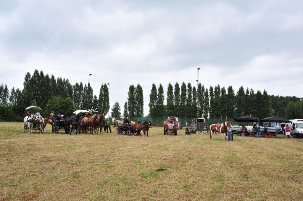 Paardenrally 111