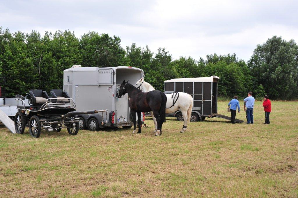Paardenrally 114