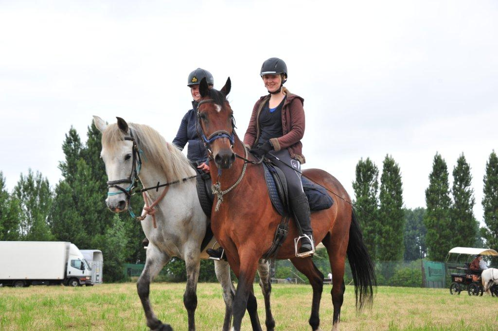 Paardenrally 116