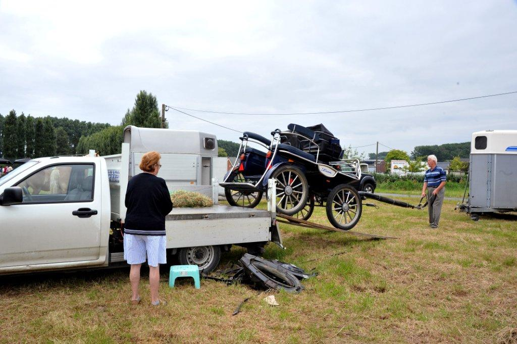 Paardenrally 12