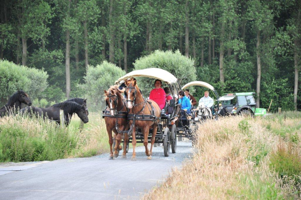 Paardenrally 130