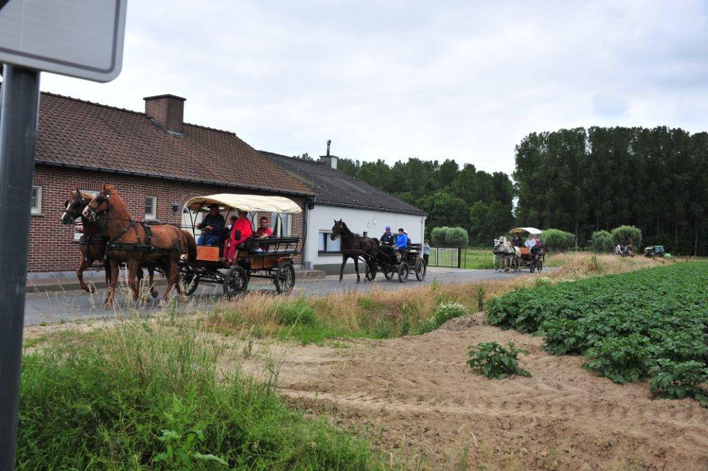 Paardenrally 131