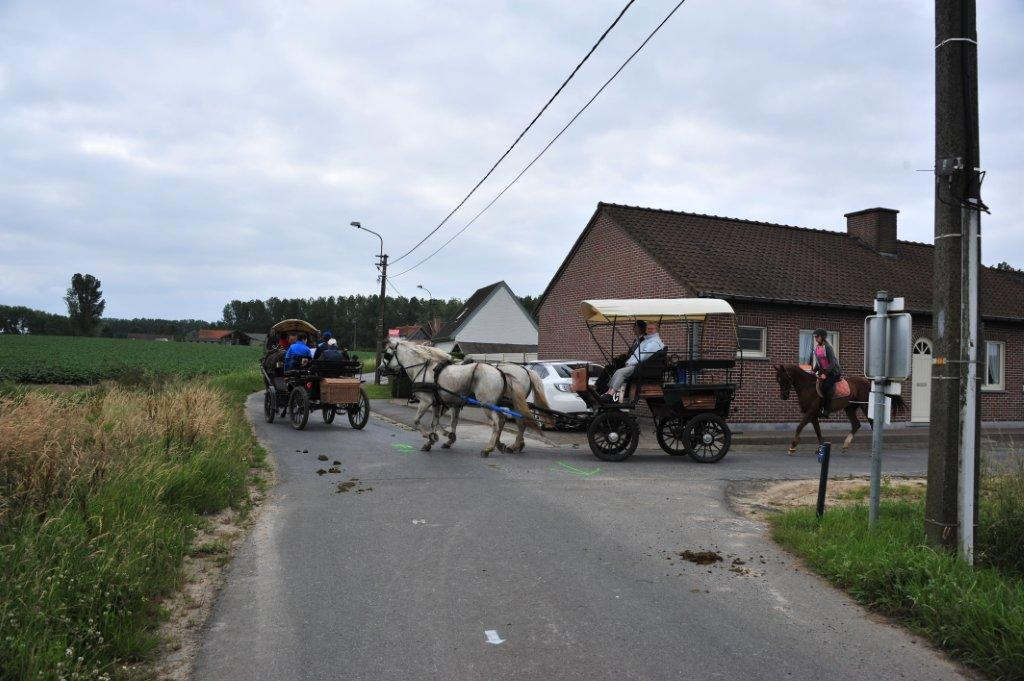 Paardenrally 132
