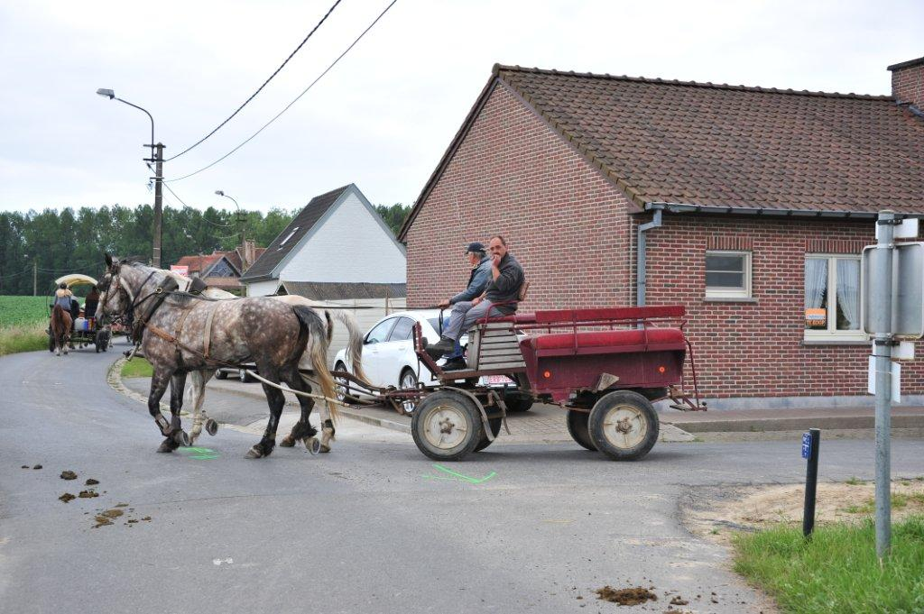 Paardenrally 133