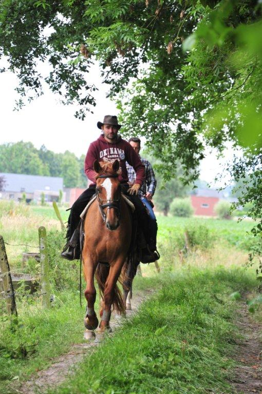 Paardenrally 136