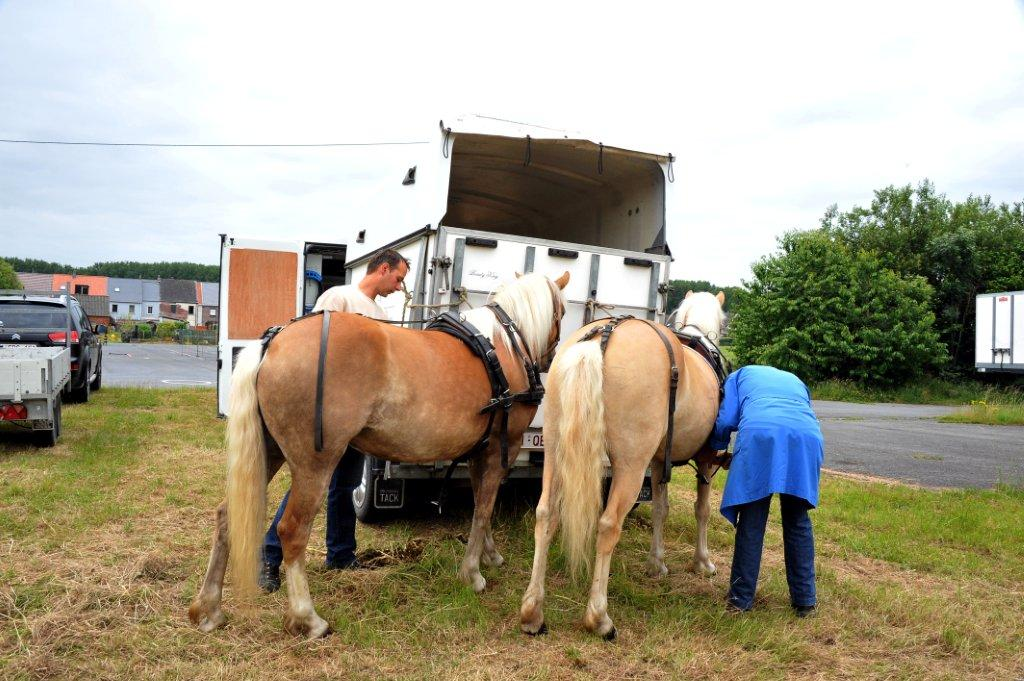 Paardenrally 14