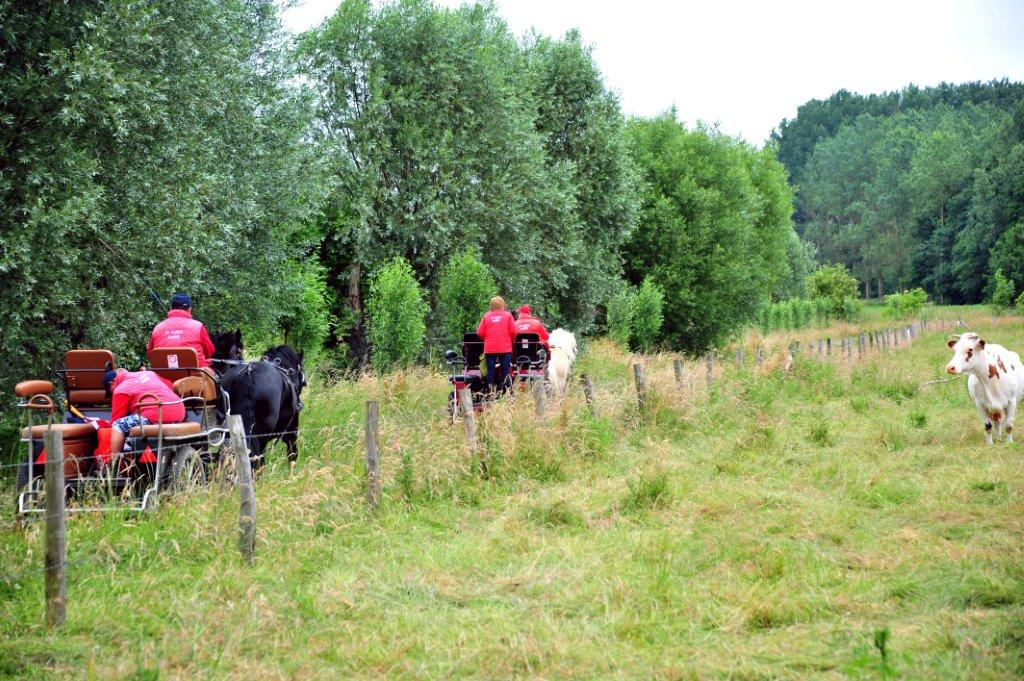 Paardenrally 141