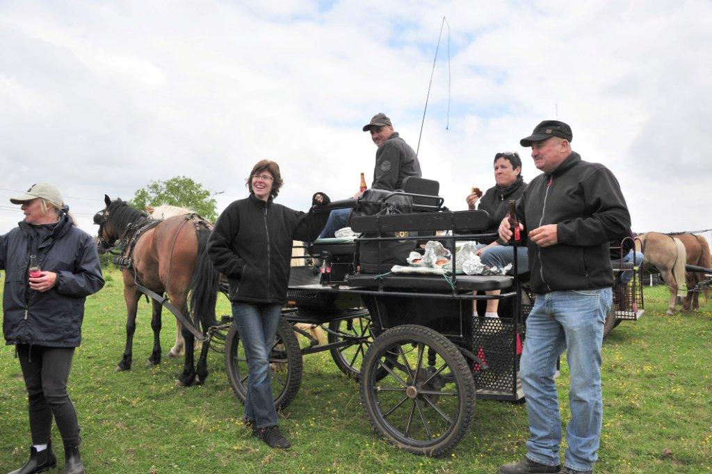 Paardenrally 142