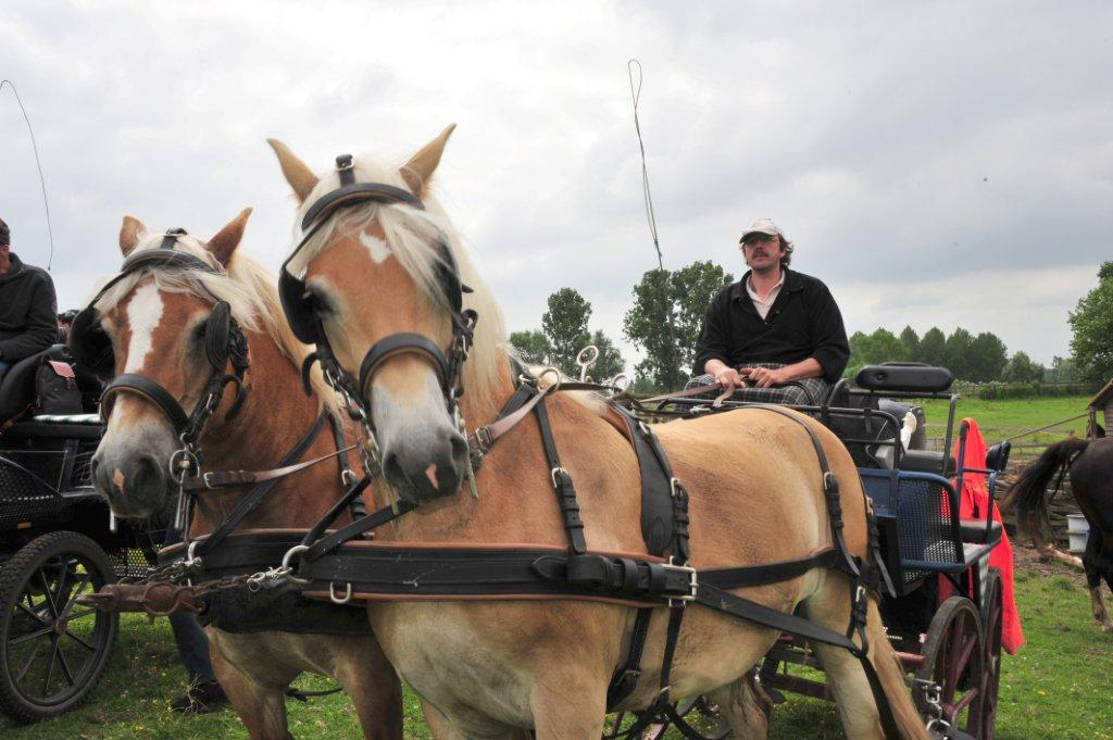 Paardenrally 147