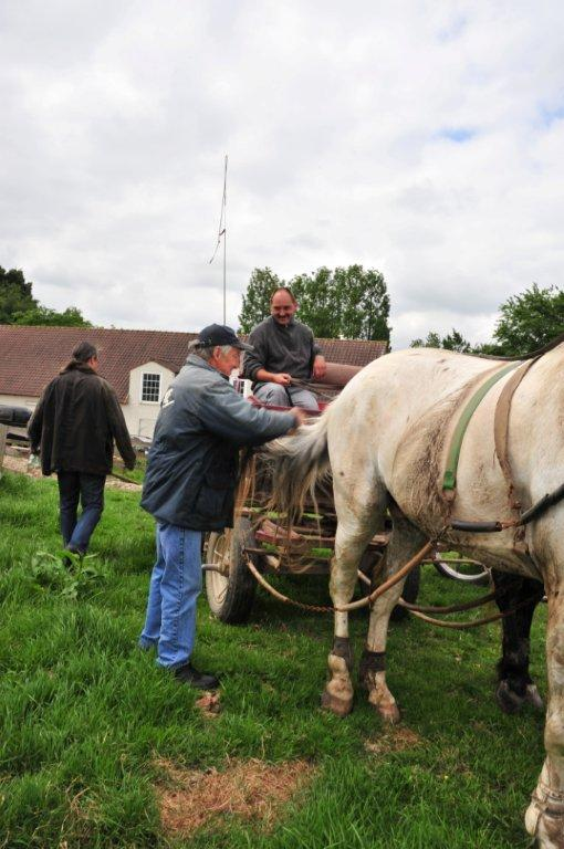 Paardenrally 154