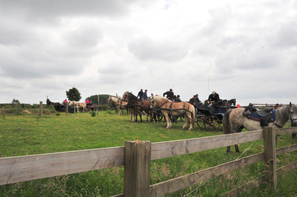 Paardenrally 168