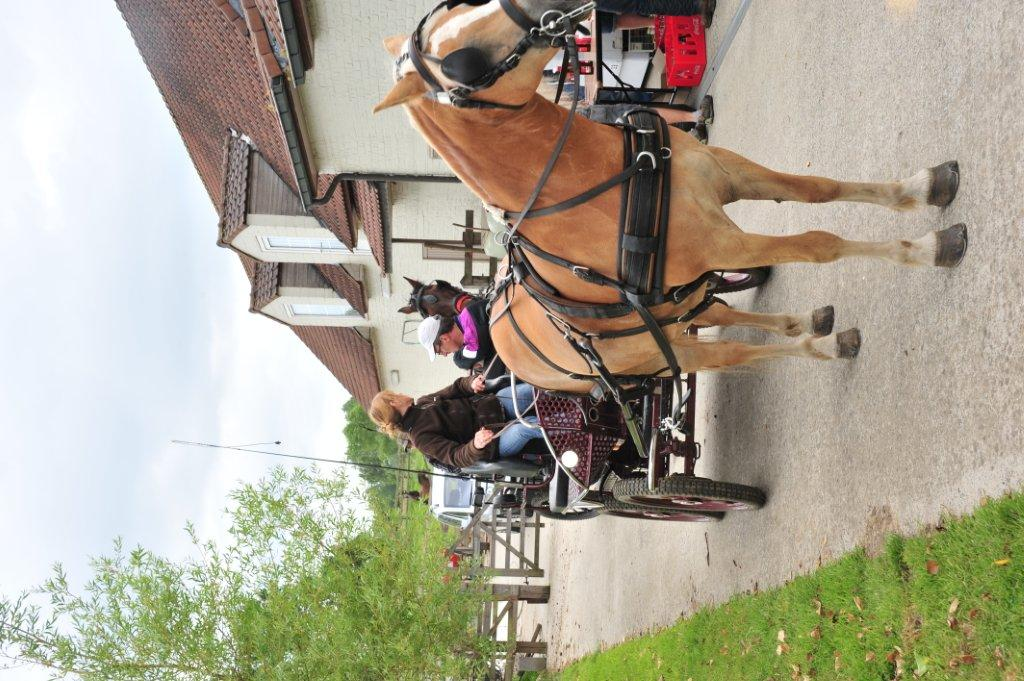 Paardenrally 169