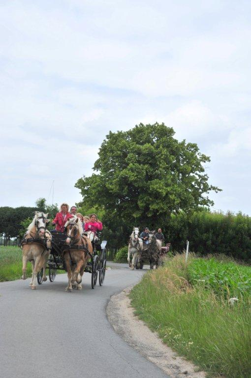 Paardenrally 171
