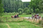 Paardenrally 173
