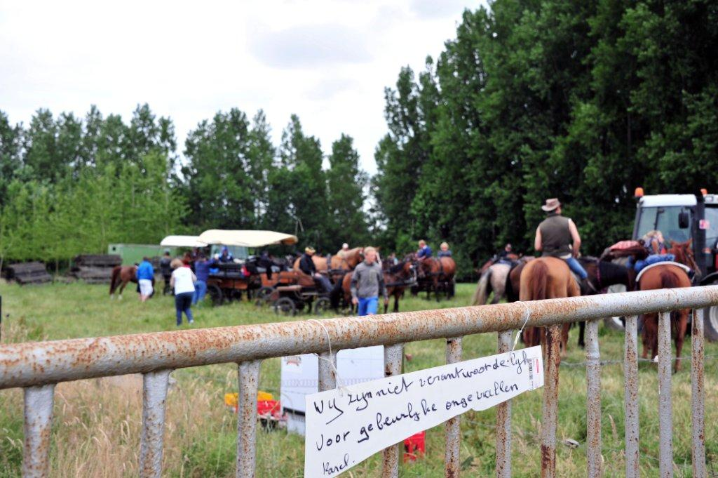 Paardenrally 176