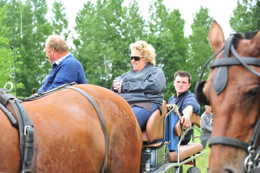 Paardenrally 183