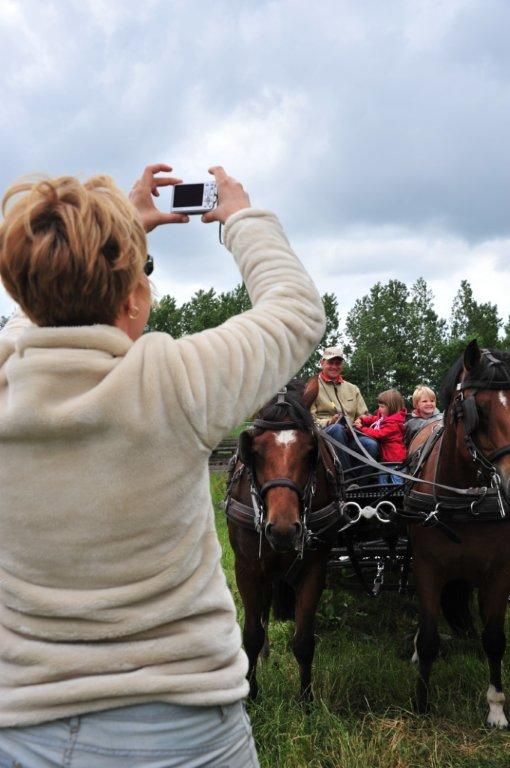 Paardenrally 185