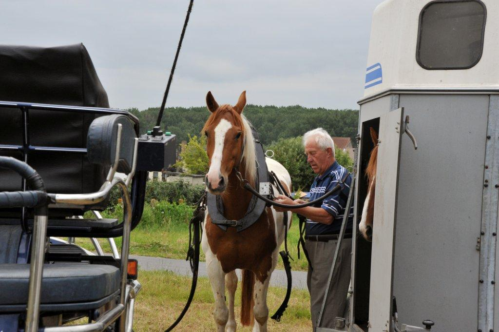 Paardenrally 19