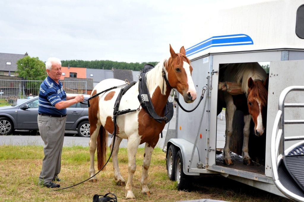 Paardenrally 20