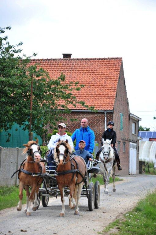 Paardenrally 224