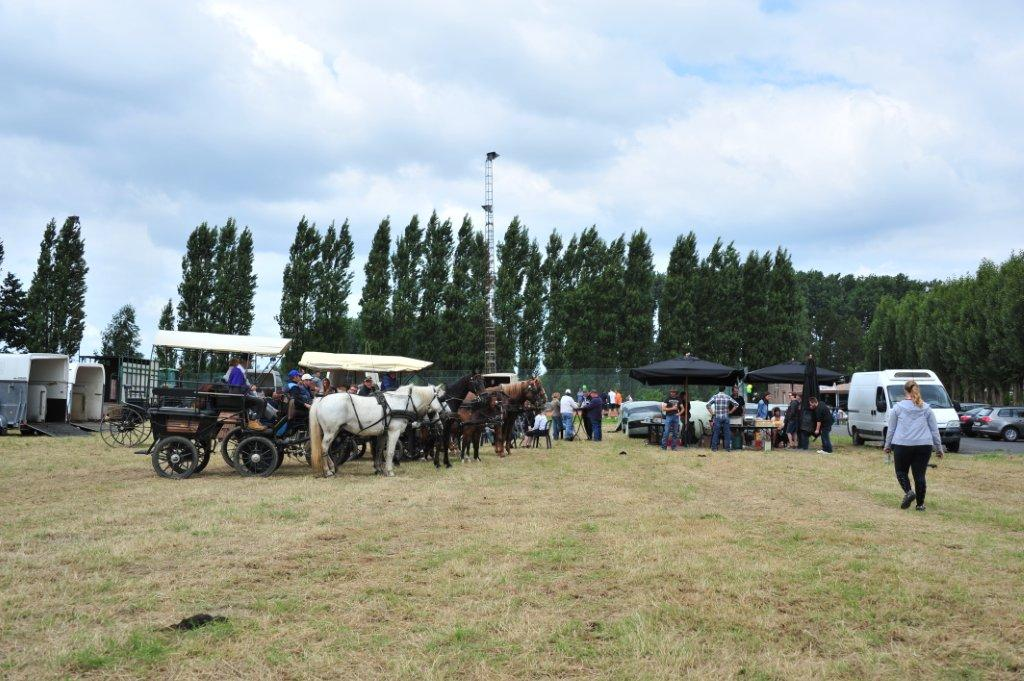 Paardenrally 238