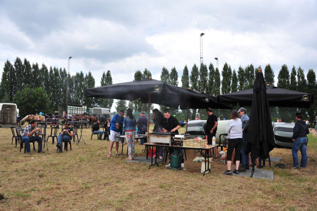 Paardenrally 242