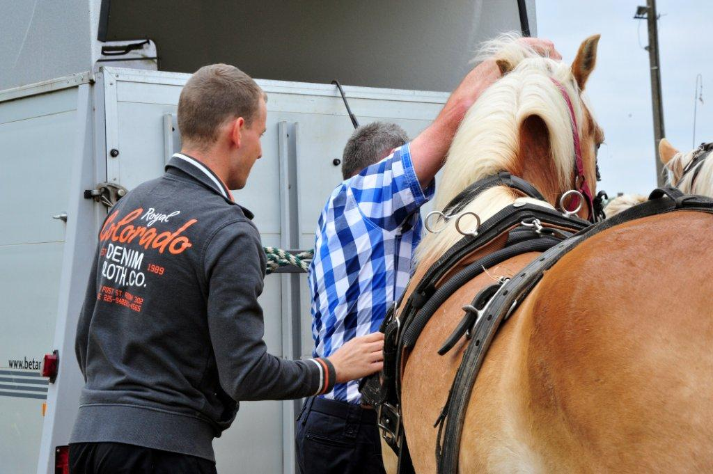 Paardenrally 28