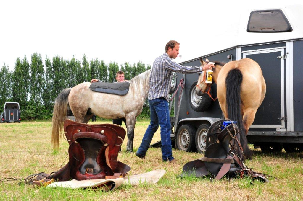 Paardenrally 40