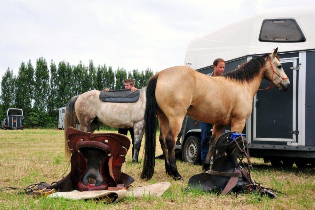 Paardenrally 41