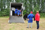 Paardenrally 46