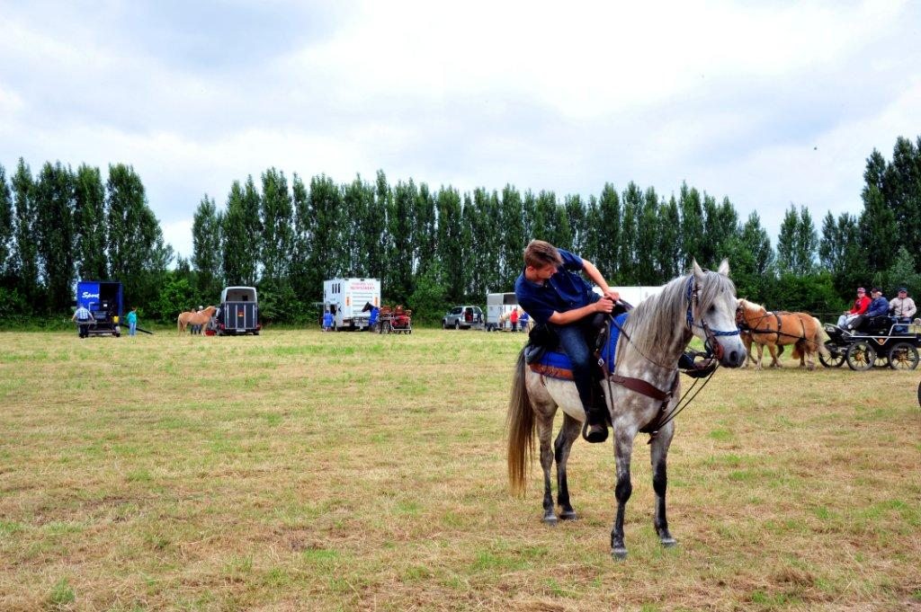 Paardenrally 63