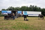 Paardenrally 7
